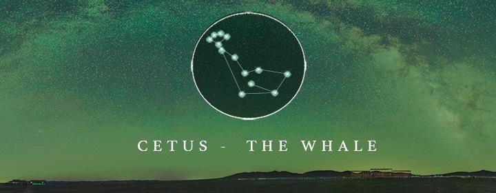 the constellation Cetus