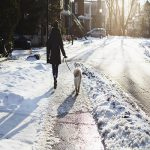 getting winter exercise by walking your dog