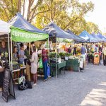 fruit and veggies in season at the farmers market